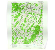 New York NY Pine Bush 129000 1956 24000 Poster