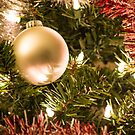 Christmas Ball by Diego Re