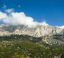 Greece, Delphi Landscape  by PhotoStock-Isra