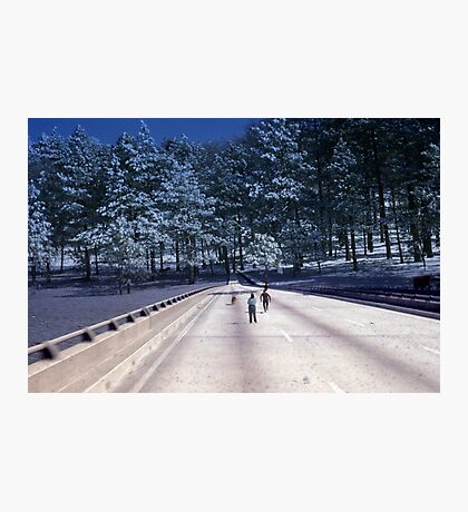 35mm Found Slide Composite - Tree Bridge Photographic Print
