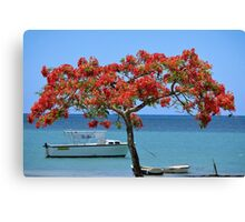 Cap Malheureux (1) - The Mauritius Collection Canvas Print