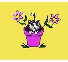 Big Eyed Cartoon Cat in Flower Pot Photographic Print