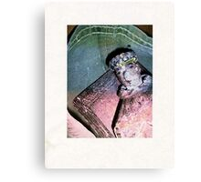 God in Search of Man Canvas Print