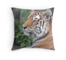 Thoughtful Tiger Throw Pillow