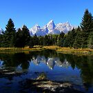 ~ Grand Tetons National Park ~ Wyoming ~ by Brion Marcum