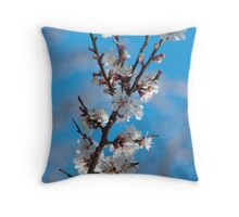 Spring cherry blossom with sky background Throw Pillow