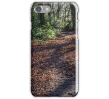 Light on the path, Buckinghamshire. iPhone Case/Skin