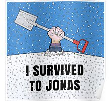 I SURVIVED TO JONAS Poster