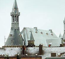 Aachener Rathaus (Aachen Town Hall) by Elizarose