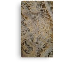 Frilly Wool Canvas Print