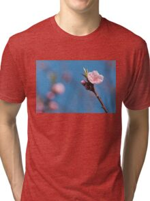 Pink cherry flowering  with sky background Tri-blend T-Shirt