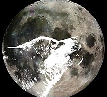 Wolf howling at the moon by monsterplanet