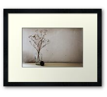 Contemporary flower seed in glass jar Framed Print