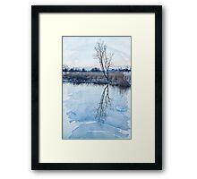 River Ant Framed Print
