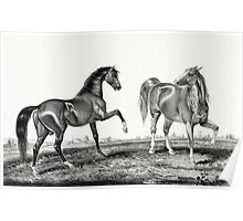 American trotting stud - Ethan Allen, Pocahontas - Currier & Ives - 1866 Poster