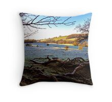 Beauty To Behold. Throw Pillow
