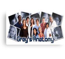 grey's anatomy-original cast Metal Print