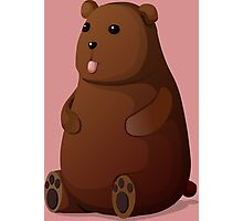 Cute Goofy Stuffed Teddy Brown Bear Photographic Print