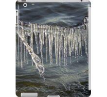 Ice Curtain iPad Case/Skin