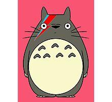Totoro Bowie Parody Photographic Print