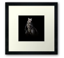 Kittysaurus Framed Print
