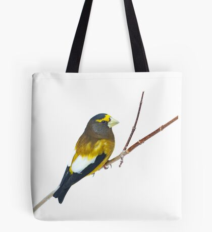 Evening Grosbeak - Algonquin Park Tote Bag