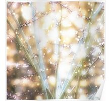 Snow and fairy lights Poster