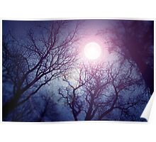 Dark enchanted photo of a full moon in the trees branches background. Blue and violet fairy-tale colors Poster