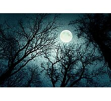 Dark enchanted photo of a full moon in the trees branches background. Blue fairy-tale colors Photographic Print