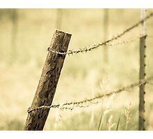 Fence Post and Barbed Wire Photographic Print