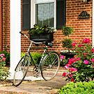 Augusta KY Bike by Mary Carol Story