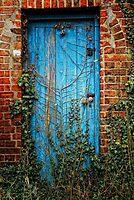 Mr Mc Gregors Garden by Simon Duckworth
