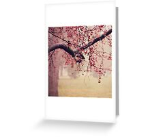 Dewy Crab-apples  Greeting Card