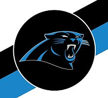 Panthers by AnythingSports