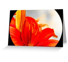 Lily 1 Greeting Card