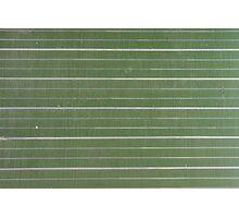green, striped chalkboard  Photographic Print