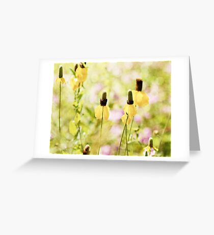 Yellow Mexican Hat Flowers Greeting Card