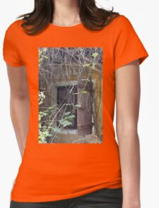 old window Womens Fitted T-Shirt