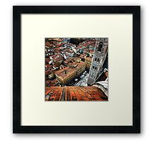 View From The Dome Framed Print