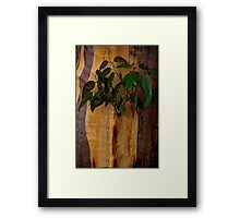 When I Grow Up I'm Going to be ? - Framed Print