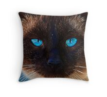 What Beautiful eyes you have! Throw Pillow
