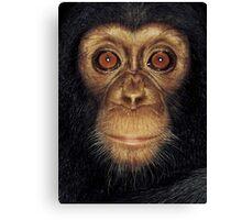 Monkey Face Canvas Print