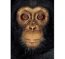 Monkey Face Photographic Print