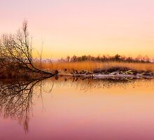 Norfolk Broads by Svetlana Sewell