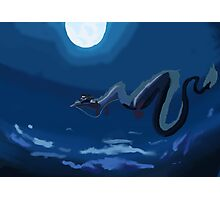 Spirited away flying scene Photographic Print