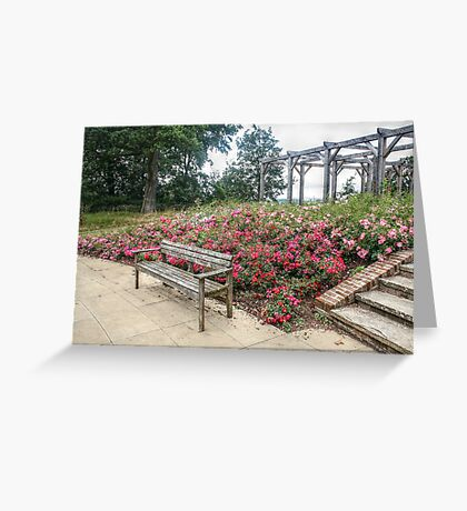 Pink and Red Roses Greeting Card