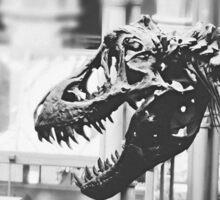 T-Rex Sticker