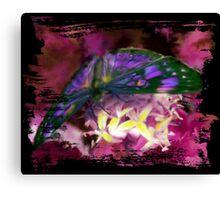 Purple Butterfly Art Canvas Print