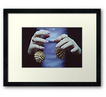 Gold pine cones Framed Print