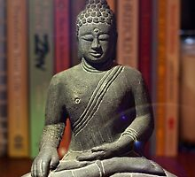 Bookshelf Buddha by Bill Wetmore